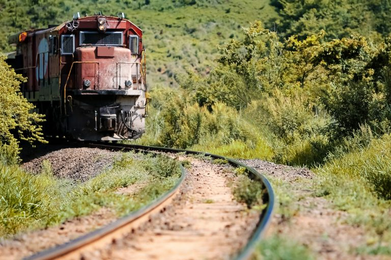 Train in the middle of vegetation in the region of Botucatu, SP, Brazil